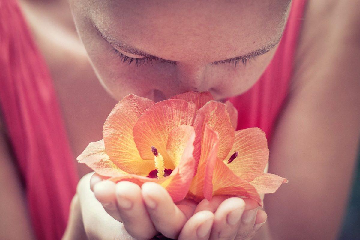 olfacto-thérapie
